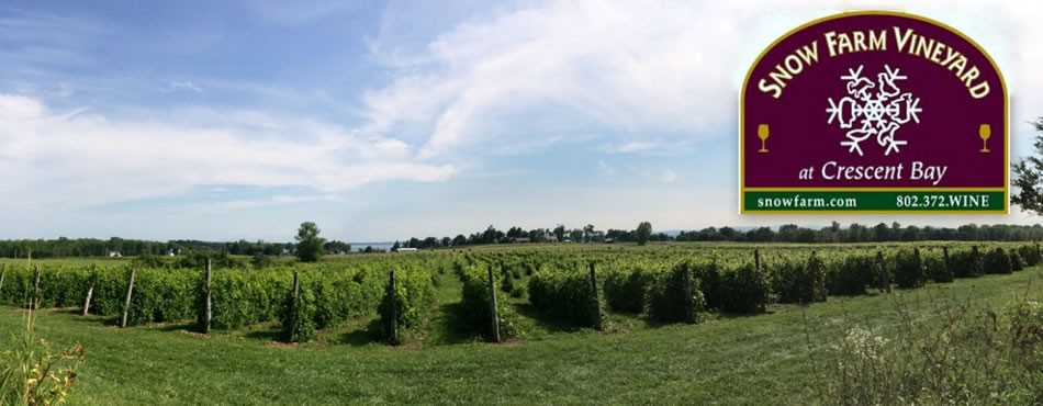 Snow Farm Vineyard