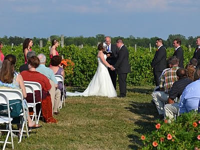 Vineyard Wedding2