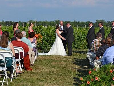Vineyard Wedding2