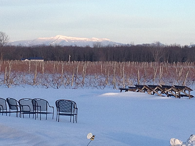 Snow Farm in the Winter